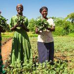 """農業バリューチェーンの強化を目指す""""Farm to Market""""アライアンスとは?【Pick-Up! アフリカ Vol. 75:2021年1月7日配信】"""
