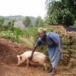 東アフリカの畜産業を脅かす気候変動:その影響とは?【Pick-Up! アフリカ Vol. 114:2021年2月23日配信】