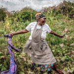 サバクトビバッタの大量発生:最新の発生・対策状況は?【Pick-Up! アフリカ Vol. 129:2021年3月16日配信】