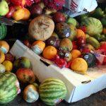 南アフリカ:年間1000万トンの食品ロス【Pick-Up! アフリカ Vol. 210:2021年8月24日配信】